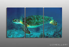 on sea turtle canvas wall art with underwater sea turtle 3 panel metal wall art ready to hang
