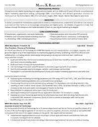Marketing Executive Resume Sample Sample Resume For Marketing Professional In India Inspirationa 21