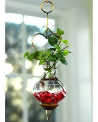 mini heart pr 72 sized indoor water garden water gardens indoor plants indoor gardening mini heart
