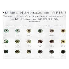 Iris Color Chart Vintage Iris Color Chart Postcard
