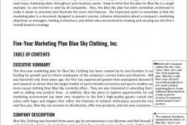 Advertising Plan Pdf 022 Advertising Plan Pdf Maggi Hub Rural Co Intended For