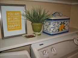 Washer Dryer Shelf My Inspired Laundry Room Part 1 Basic Organization