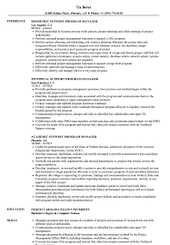 Support Program Manager Resume Samples | Velvet Jobs