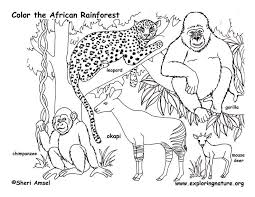 Small Picture African Animals Coloring Pages Bebo Pandco