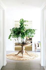 a natural entry round jute rug via lily serena and rugs flokati review furniture entryway