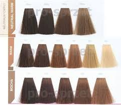 Matrix Socolor Grey Coverage Color Chart Mocha Matrix Hair Color Chart Rolif