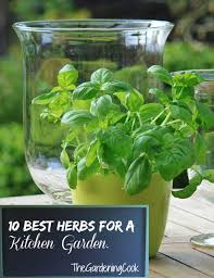 the ultimate herbs for garnishes 10 best herbs for kitchen gardens thegardeningcook com 10 best herbs