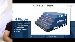 Nasm One Rep Max Chart Better Program Design The Nasm Opt Model