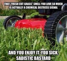 Funny memes - Fresh cut grass smell | FunnyMeme.com via Relatably.com