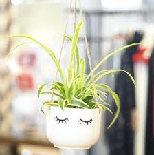 glass hanging planters wall planters outdoor plastic hanging pots white ceramic planter wall mounted garden pots hanging glass planters ikea