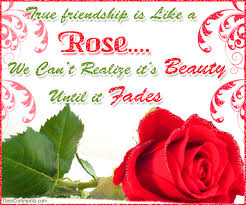 Beautiful Roses With Friendship Quotes Best of True Friendship Is Like A Rose Friendship Quotes Graphics24
