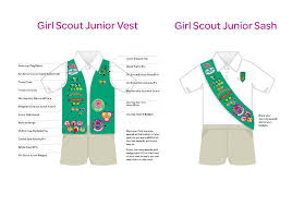 Junior girl scout pin