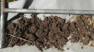 Soil Sampling Ontario Grain Farmer