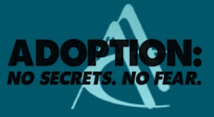 adoptees birthmother here s the link
