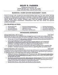 Account Manager Job Description Templates Duties Operations Resume