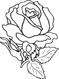 Small Picture Amazing Rose Flower Coloring Page Download Print Online