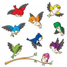 Mecca 3610381 960 720 gambar kabah hitam putih free. 31 Burung Cendrawasih Vector Terupdate Pojok Burung