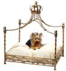 Dog Beds - Blog