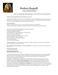 Sample Resume For Business Development Contact B67yahoocom Location