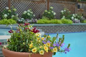landscape and flower pot garden in potomac md