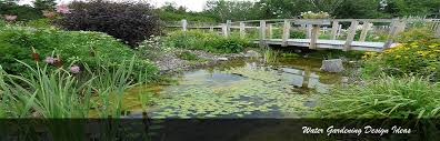Small Picture Water Gardening UK Ponds and Water Features DIY Ideas