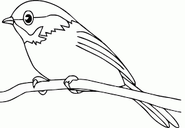Small Picture Get This Bird Coloring Pages to Print Online 56229
