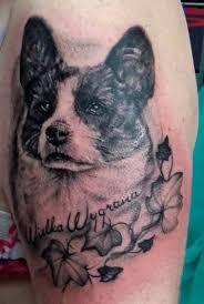 Tetování Obraz Psa Ifaunacz