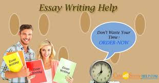get professional essay writing help online by casestudyhelp com  image 1