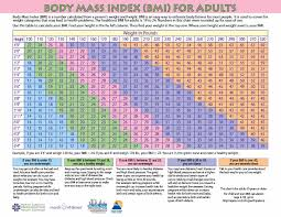 Bmi Chart Women 36 Free Bmi Chart Templates For Women Men Or Kids