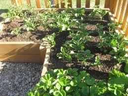 Do It Yourself Garden Ideas Home Design Furniture Decorating Fresh - Do it yourself home design