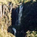 imagem de Arvorezinha Rio Grande do Sul n-9