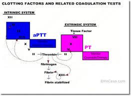 The Blood Coagulation Process Nurse Ce