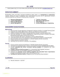 Professional Resumes Format Or Free Download The Marketer S Pocket
