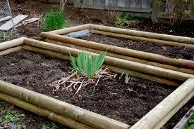 Small Picture Building A Backyard Garden Photo Album Patiofurn Home Design Ideas