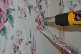 removing wall paper 10 dsc 0238