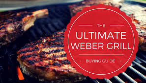 Weber Grill Temperature Chart Which Weber Grill To Buy The Ultimate Guide 2019