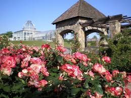 cochrane rose garden cochrane rose garden at lewis ginter botanical garden