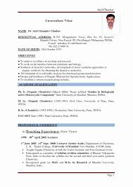 Sample Resume For Teacher Without Teaching Experience New Sample
