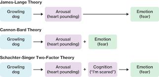 Emotion Course Hero