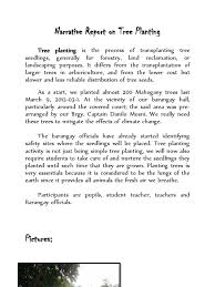 tree plantation essay co tree plantation essay narrative report on tree planting