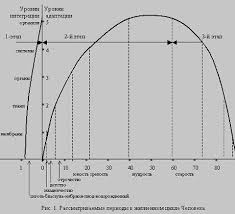 Реферат Жизненный цикл Человека БОЛЬШАЯ НАУЧНАЯ БИБЛИОТЕКА Реферат Жизненный цикл Человека