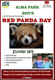 Quotes About Pandas Best Happy International Red Panda Day Red Pandas