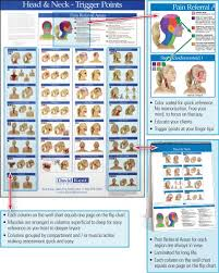 Trigger Point Charts 5 Chart Set Kent Health Systems