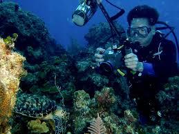 Photographer Training Class Underwater Photographer Job