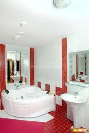 bathroom design with jacuzzi bath