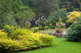 Small Picture How to Design your Garden Landscape with Margaret Roach The joe