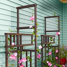 Small Picture Build a trellis that becomes even more beautiful when intertwined