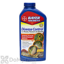 Advanced Disease Control for Roses, Flowers \u0026 Shrubs Concentrate