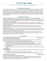 Senior Executive Resume Account Example Examples Manager Summary