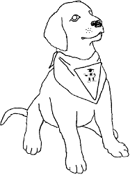 Small Picture Dog Coloring Pages Printable Basset Hound Coloring Page Sheet Dog